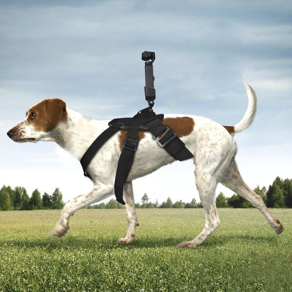 DJI OP-Q9176 Yeni Gimbal Kamera Pet Köpek DJI OSMO POCKET GOPRO için Göğüs Bandı Kemer Kayışı Tutucu Eylem Kamera Aksesuarları