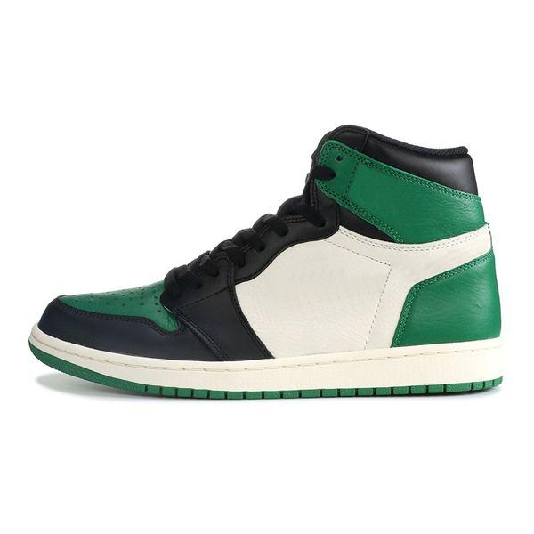 #15 Pine Green
