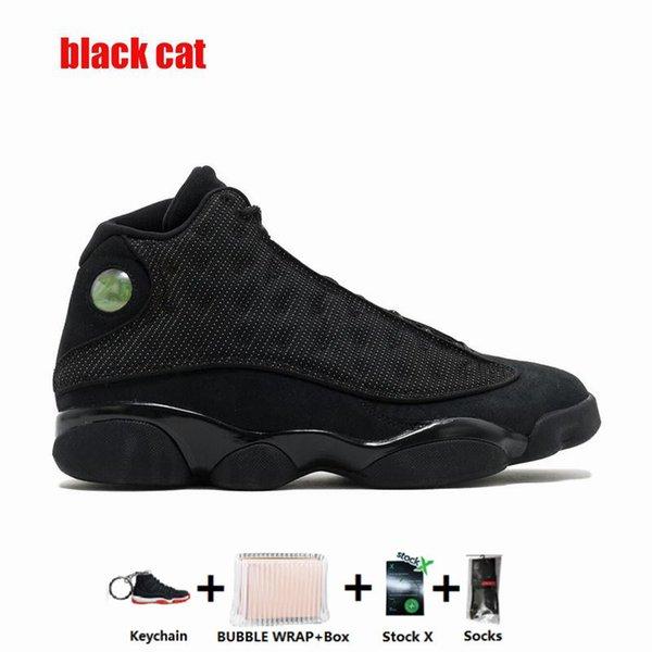13С-черный кот