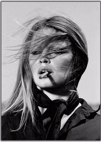 Kate Moss New Custom Sexy Star Brigitte Bardot Vintage wall decor Art Silk Print Poster 8