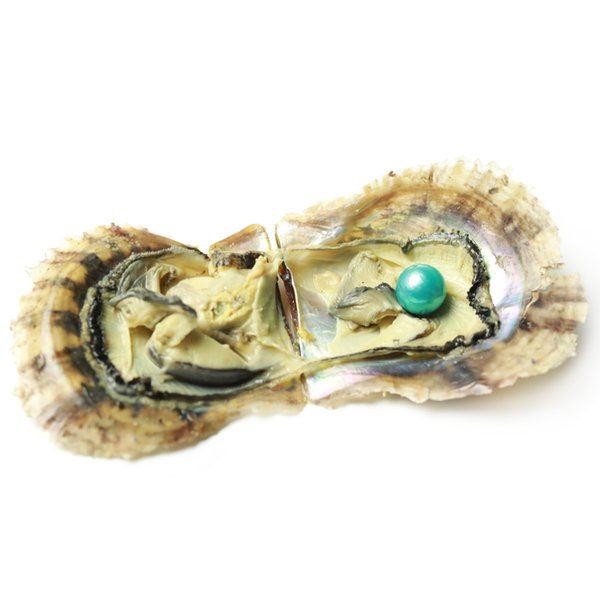 JNMM Akoya Oyster con Edison Pearls SINGLE Round Wish Pearl 11-13mm Pearl Mixed Colors Saltwater Oyster Sea Oyster