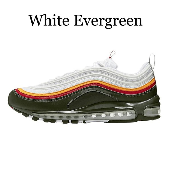 White Evergreen
