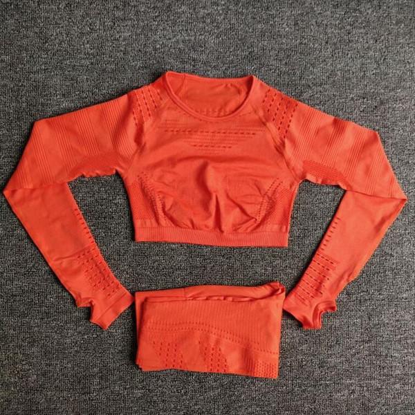 C4 Sets orange