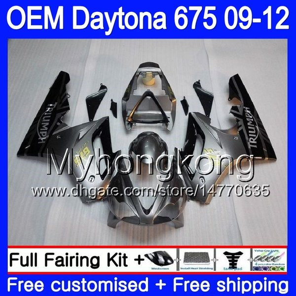 Silver grey Injection For Triumph Daytona 675 09 10 11 12 Bodywork 323HM.7 Daytona-675 Daytona675 Daytona 675 2009 2010 2011 2012 Fairing