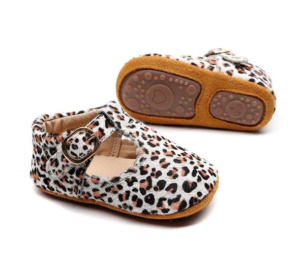 leopardo 7