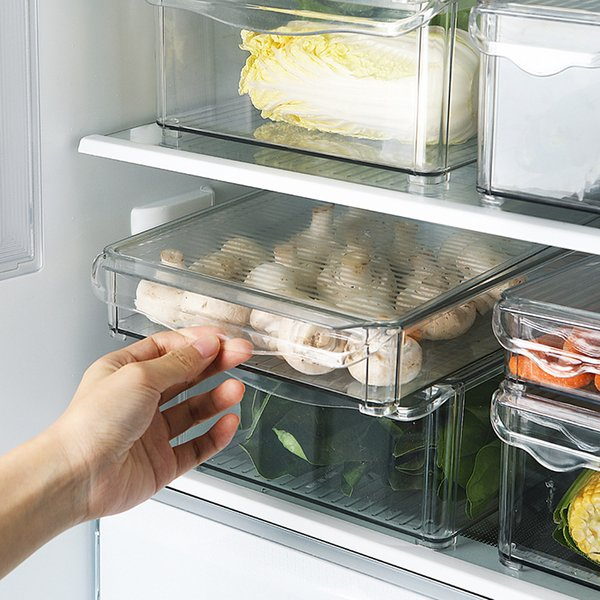 Fresh-keeping Box Plastic Transparent Sealed Box Refrigerator Fresh-keeping Storage Fruit Vegetable Frozen Storage Wy120714