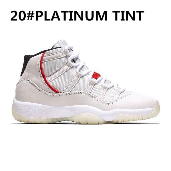 20-PLATINUM-TINT