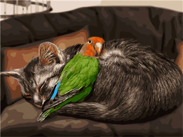 16x20'' Gray Cat & Green Parrot Live In Harmony DIY Paint By Numbers Kits On Canvas Art Acrylic Oil Painting