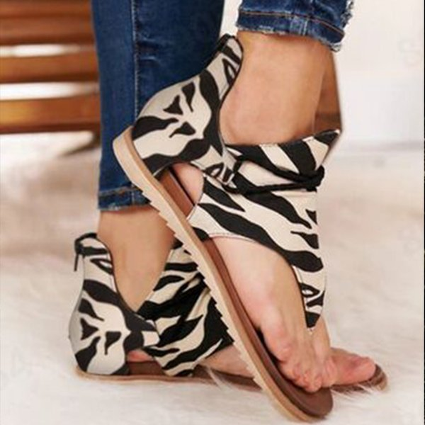 Zebra color 1