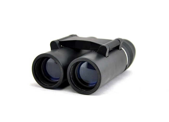 Chinese  Visionking 8X21 Fixed Focus Roof Outdoor Camping Hunting Travelling Compact Binoculars Telescope for Kids Child gift manufacturers
