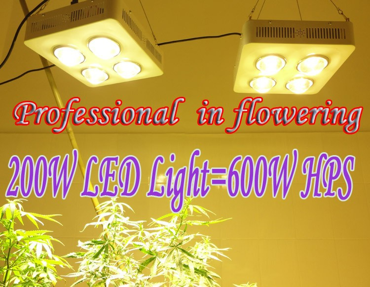 200W LED Light=600W HPS