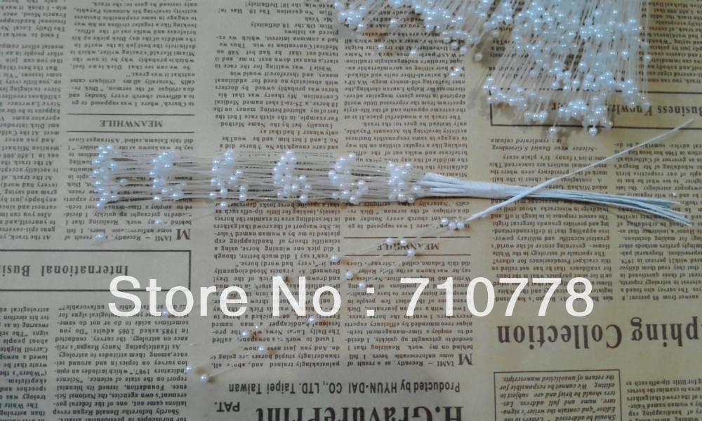 IMG_20130805_185028