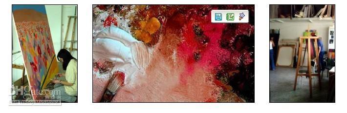 M19- Hoge kwaliteit dierlijke kunst olieverfschilderij- pauw handgeschilderd modern abstract enorm op canvas in aangepaste maten