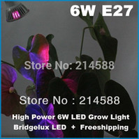 Wholesale Cheapest Led Wholesale Growing Lights - Wholesale-Wholesale 5PCS 6w E27 85-265V 2red 1blue LED Grow light for flowering plant and hydroponics system Cheapest led grow light