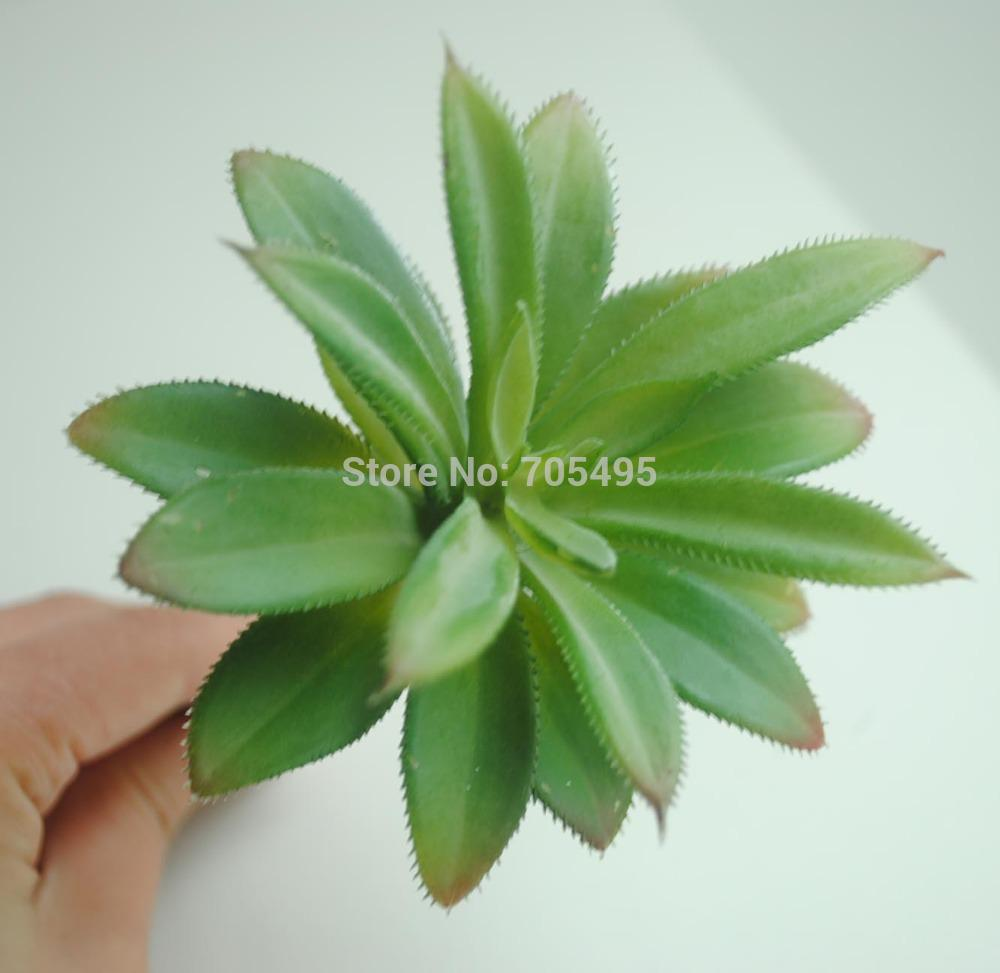 wholesale 8cm silk succulent plant pick diy decoration flower artificial succulent from donaold dhgatecom