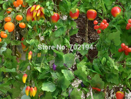 Wholesale Decoration Vegetable - Wholesale-Fashion artificial fruit vegetable Green rattan climbing hanging vines flowers home decoration 25pcs lot free shipping