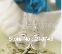 Wholesale Glass Vial Bubble Globe - Wholesale-Free ship!!20sets lot 16*4mm(opening) glass globe bubble & 6mm silver cap & Ear hook set DIY Glass ball vial earings
