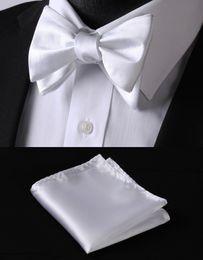 Wholesale Handmade Embroidered Handkerchiefs - Wholesale-BL21W Purple White Solid 100%Silk Jacquard Woven Men Butterfly Self Bow Tie BowTie Pocket Square Handkerchief Hanky Suit Set