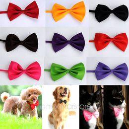 encantadora ropa al por mayor Rebajas Venta al por mayor-2015 Lovely Hot Selling Nueva moda Cute Dog Cat Pet Puppy Toy Kid Cute Bow Tie Corbata Collar de ropa ZS * MPJ141 # C9