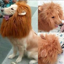 Wholesale Ear Lion Head - Wholesale-Pet Costume for Large Dog Lion Mane Head Headgear Hat with Ears Brown Color