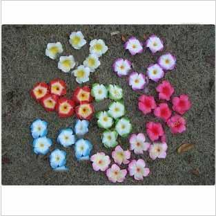 60шт(12шт/УП)образец детские дети 5 листья цветок франгипани волос клип волос цветы jkt67gfw45ytd
