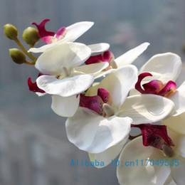 2019 materiais de grinalda por atacado Atacado-1 haste de flor de seda orquídea borboleta orquídea traça para casa nova casa casamento festival decoração 4 tipos 12 cores F152