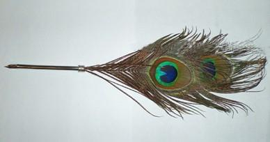 Office Supplies Singular Gifts Support Peacock Feathers Double Quill Dip  Pen   Card Installed
