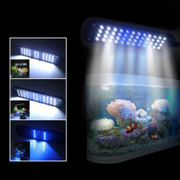 Wholesale Aquarium Touch - New 15V 48 LED touch Clip Lamp aquarium lighting acuario fish tank lights aquarium accessories
