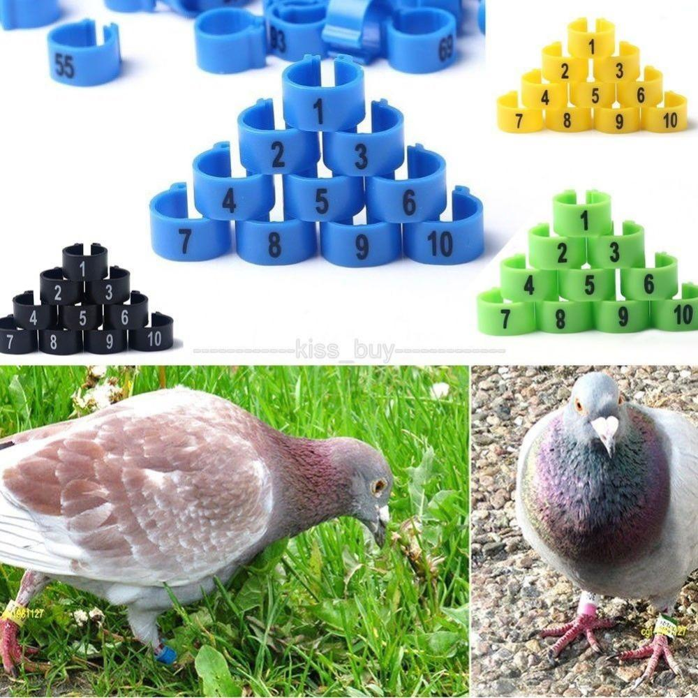 Wholesale-100Pcs 9.5mm Poultry Leg Bands Bird Pigeon Parrot Chicks Rings 1-100 Numbered Free shipping / tracking number