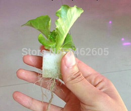 Wholesale Wholesale Hydroponic Supplies - Wholesale-2.3 * 2.3 garden supplies hydroponic seeds vegetables foam cubes pot for starting seed for hydroponics system (117PCS   lot)