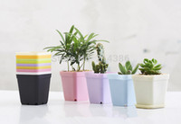 Wholesale Garden Potting Tray - Wholesale-Multicolor mini square plastic vase with tray gardening succulents bonsai planter nursery flowerpots 10pcs lot