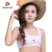 Wholesale Underwear Children Free Shipping - Wholesale-Wholesale and free shipping beginner bra small training underwear for 5-18 years old young girl and children 3017