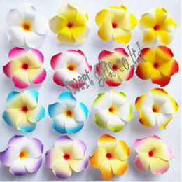 Wholesale Wholesale Hawaiian Flower Clips - Hawaiian frangipani foam flower clips Beach style hair clips mixed colors