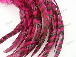 Argentina Extensión del pelo de la pluma del gallo grizzly Extensiones de plumas de 100pc + 1 aguja + 200 cuentas GRF001 # 4 Suministro