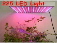 plante led élève la lumière 15w achat en gros de-225 LED 110-240V à spectre complet hydroponique élèvent une plante légère élèvent la lumière rougeBleu