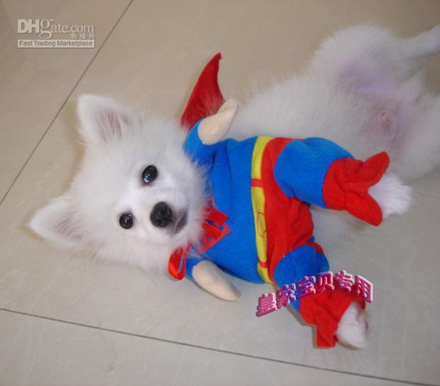 I migliori vestiti del cane del superdog del cane costumi del superman per i cani, vestiti del cane dell'animale domestico sveglio, costume 20pcs