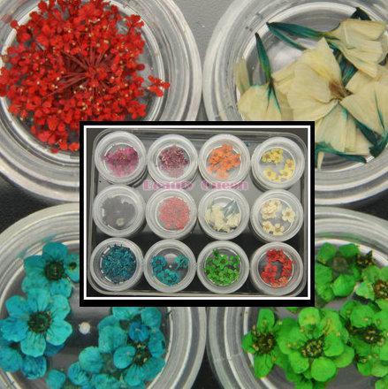 4 fiori secchi secchi in stile con 12 colori per petalo 3D Natrual NAIL ART Tips Design Gel UV Strumento di decorazione in scatola * 3 scatole / lotto