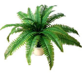 2019 Wholesale Artificial Plants Trees Boston Artificial