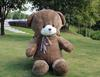 Het nieuwe knuffels twee een pakket van 55 cm vijfde egel speelgoed draag armen beer grote teddybeer