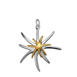Heißer Verkaufs-freier Verschiffen 925 Sterlingsilber-Stern-Halsketten bezaubert hängende DIY Art- und Weiseschmucksache-Zusätze P026 von Fabrikanten