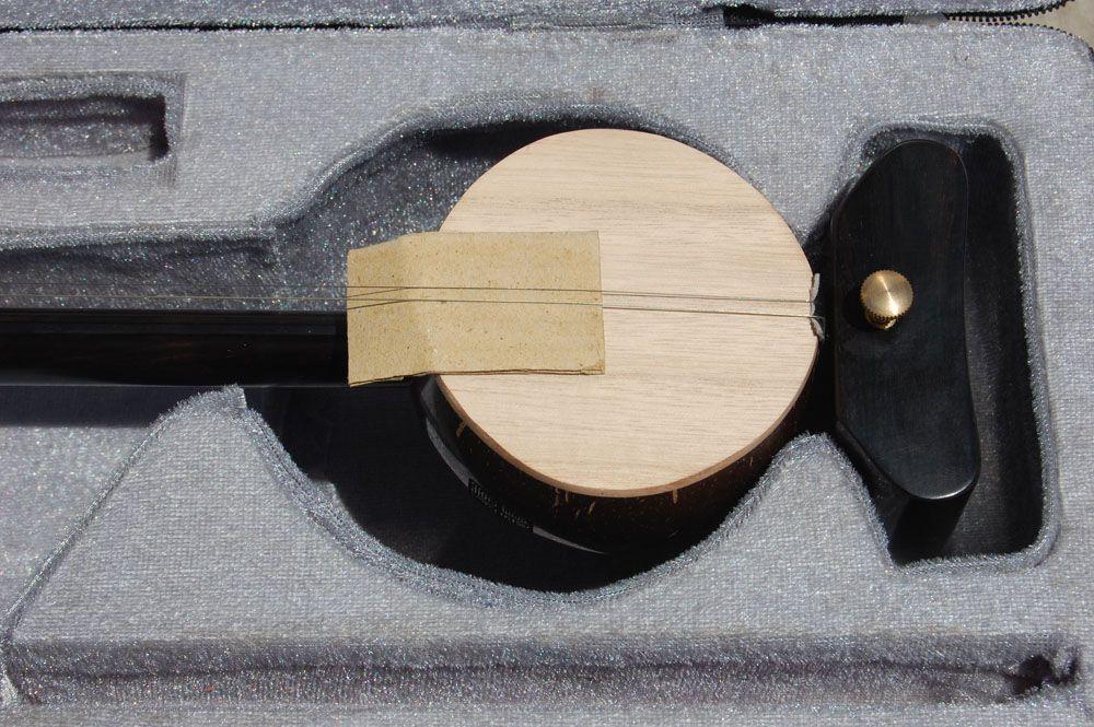 Wholesale Banhu、ブラックウィングセルティバンフバードヘッド、中国楽器、メーカー販売