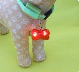 Dog Cat Safety Flash flashing intermitente LED luz collar mascota etiqueta, envío gratis