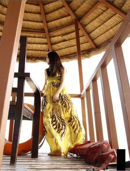 2017 gratis verzending zomer damesjurken maxi lange bohemie jurken luipaard 3 kleuren strand vakantie jurk