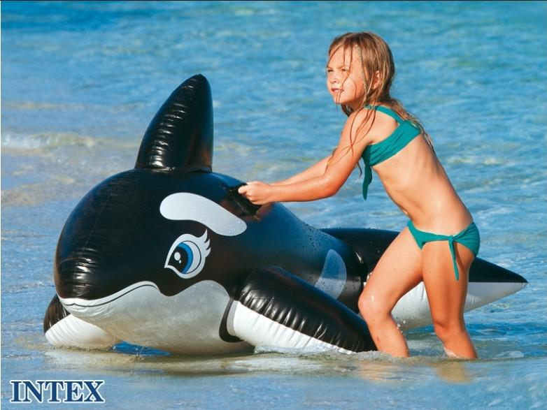 Inflatable Whale Ride On Swimming Pool Float Tube, Intex 58561 Large Whale  Rider, Free Shipping