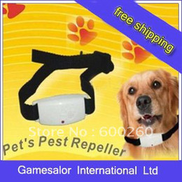 Wholesale Flea Dog Cat - Ultrasonic Flea pest repeller For dog cat pet pets #8094 free shipping