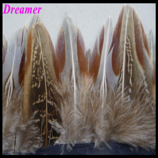 Envío gratis 2 yardas RAW Feasant Feather Fiesta de boda Festival Festival Decoración de la decoración Pluma aprox 10-15cm