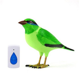 Wholesale Digital Remote Control Doorbell - Home Wireless Bird Remote Control Digital Doorbell, freeshipping