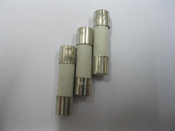 top popular Ceramic Fuse 250V 5mm x 20mm Fast Blow 0.5A 100 pcs per Lot 2021