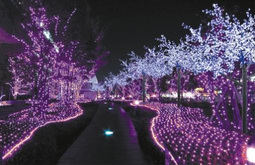 Meshwork Lamp 800 LED Net Lights 3M * 6M gardin ljus, jul prydnad bröllop hem dekoration Vattentät LED strip ljusremsor belysning