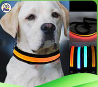 Wholesale Led Light Up Necklace - Newest Pet Dog Safety Collar LED Light-up Flashing Glow in the dark necklace Collars free shipping